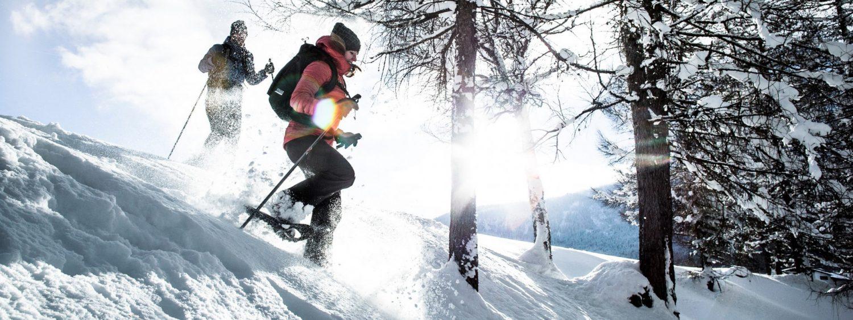 Eine Winterlandschaft mit Wäldern im Hintergrund. Im Vordergrund viel Schnee, kale Bäume und zwei Skiläufer.