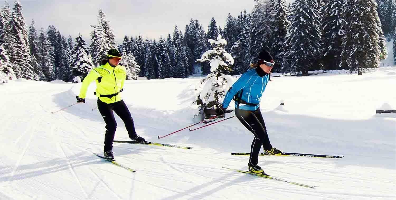Eine Schneelandschaft mit verschneiten Tannen vor allem im Hintergrund. Im Vordergrund fahren zwei Skifahrer in gelben und blauen Skisachen.